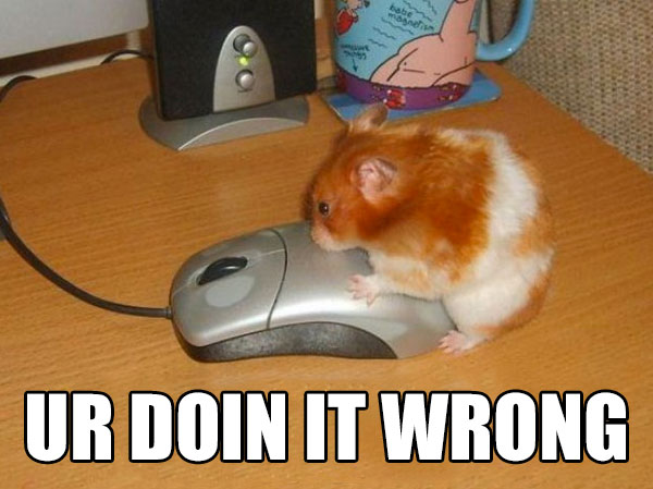 hamstersex